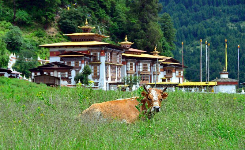 Bumthang-cultural-Trek